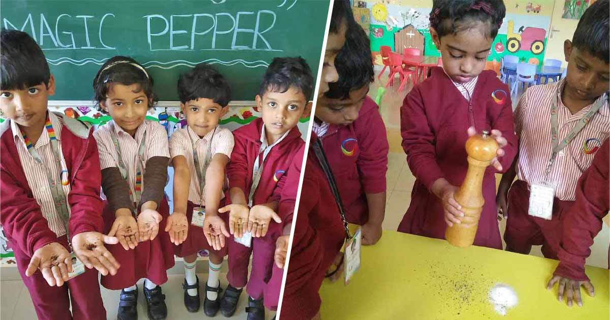 Jumping pepper, magical pepper and cornstarch-water experiments amazed children